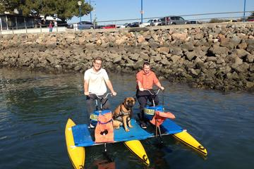 Pet Friendly Long Beach Waterbikes