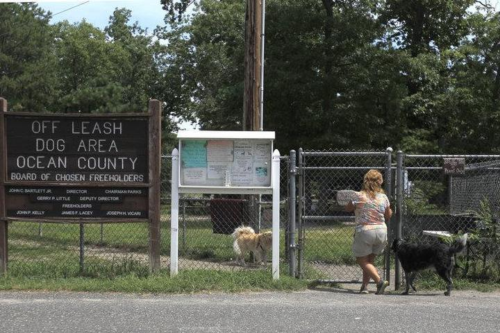 Pet Friendly Ocean County Dog Parks