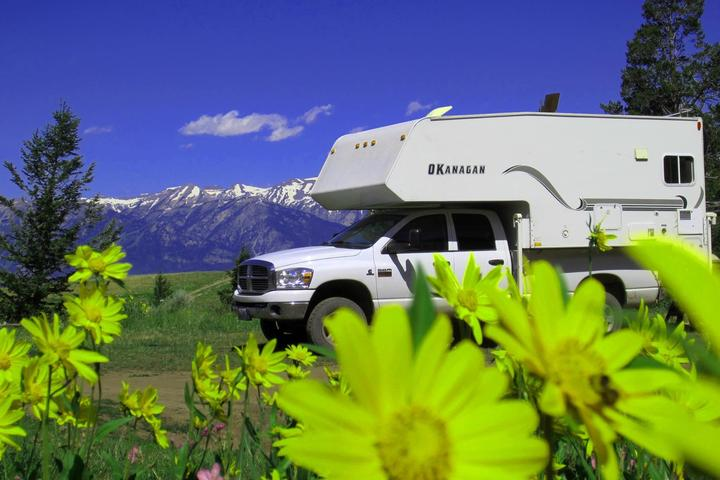 Pet Friendly Around the Park RV Rentals