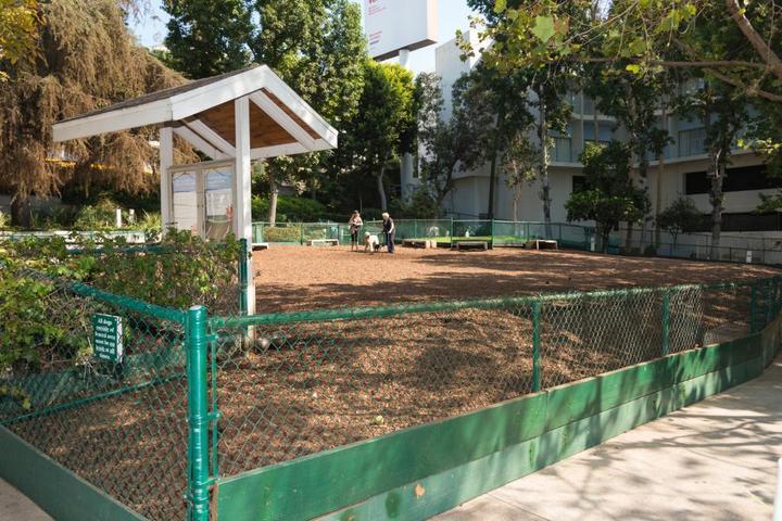 Pet Friendly William S. Hart Park & Off-Leash Dog Park