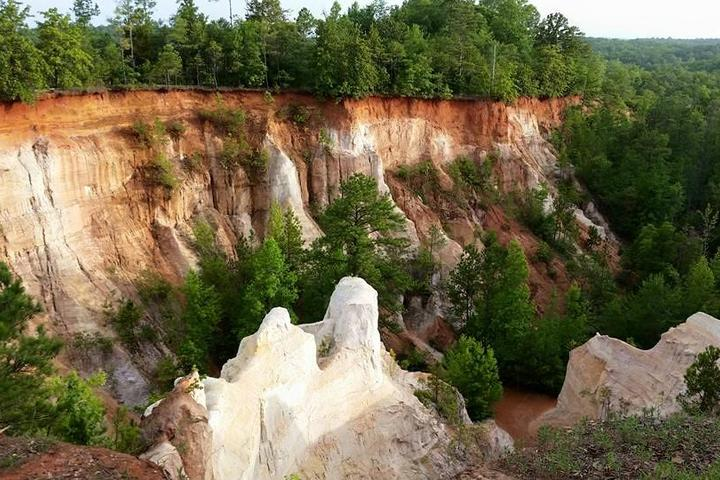 Pet Friendly Providence Canyon State Park