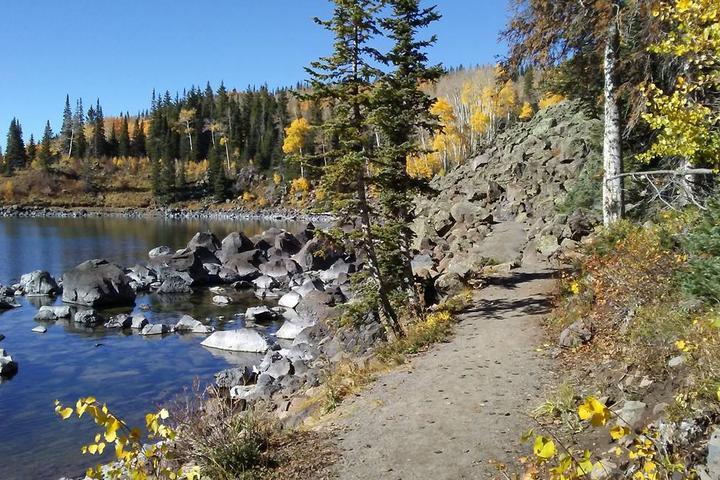 Pet Friendly Mesa Lakes and Lost Lake Trail