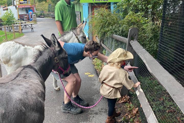 Pet Friendly Elmwood Park Zoo