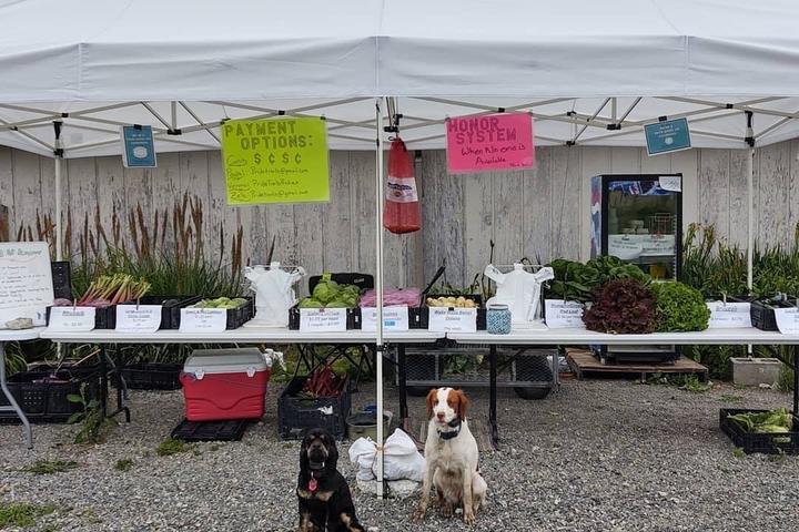 Pet Friendly Pride Trails Produce
