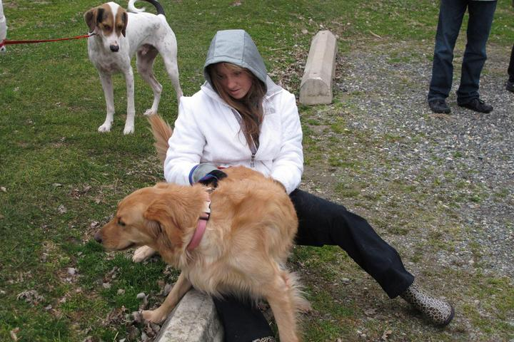 Pet Friendly Fort DuPont State Park