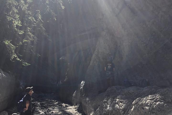 Pet Friendly Beginner Hiking Day in Kananaskis