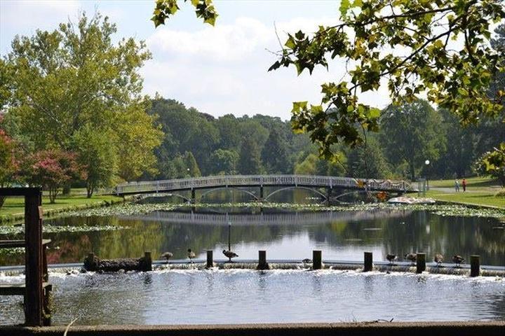 Pet Friendly Salisbury City Park