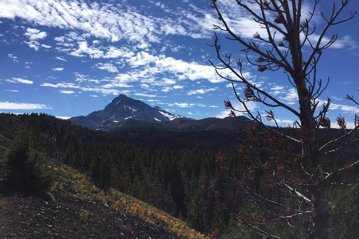 Pet Friendly Matthieu Lakes and Collier Cone Trail
