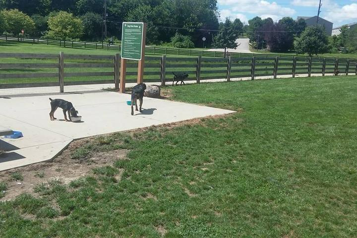 Pet Friendly Three Creeks Dog Park at Sycamore Fields