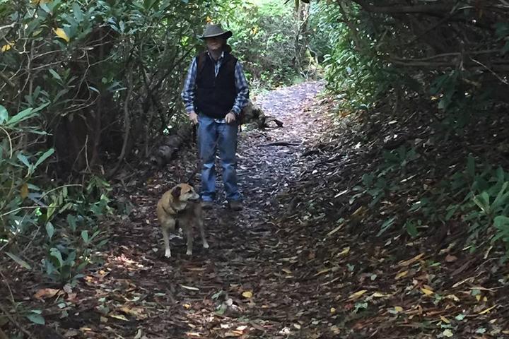 Pet Friendly Price Lake Loop Trail
