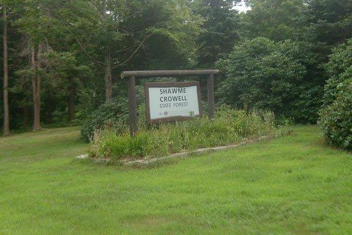 Pet Friendly Shawme-Crowell State Forest