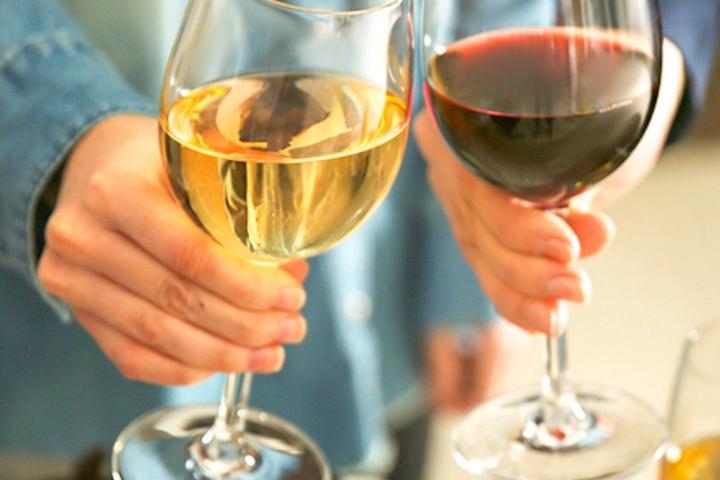 Pet Friendly Wine and Chocolate Pairing