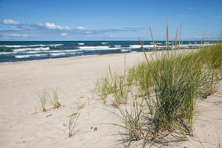 Dog Friendly Beaches in Indiana - Bring Fido