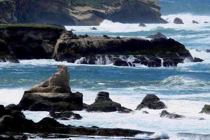 Pet Friendly Montaña de Oro State Park