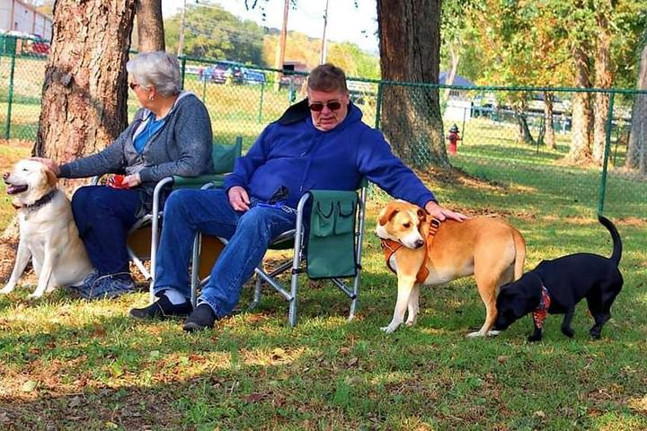 Pet Friendly Rotary Pup Dog Park