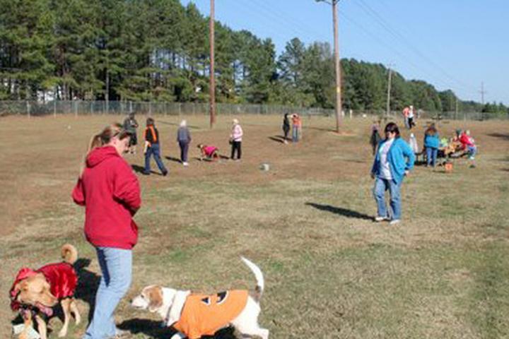 Dog Friendly Activities in Lexington, SC - Bring Fido