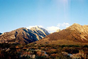 Pet Friendly Mount Williamson Trail