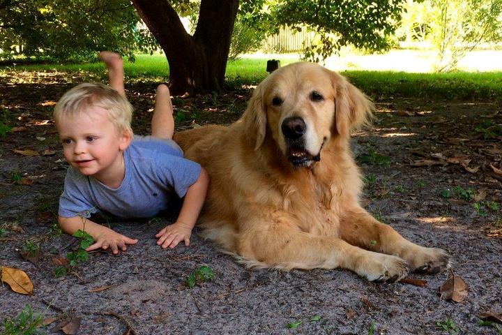Pet Friendly Sam and Winston