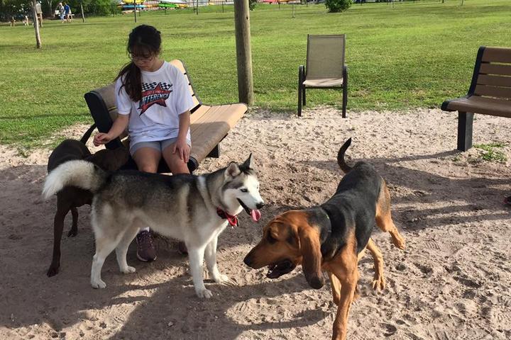 Pet Friendly Vero Beach Dog Park