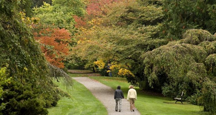 Terrific Washington Park Arboretum Cjindustries Chair Design For Home Cjindustriesco