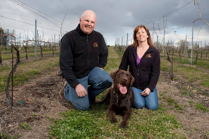 Pet Friendly Heritage Vineyards