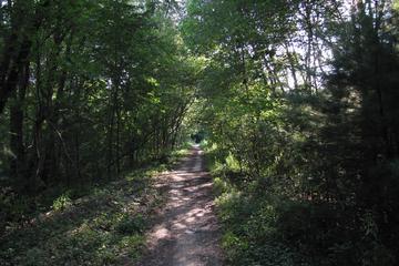 Pet Friendly Grimshaw Lake Watchable Wildlife Trail