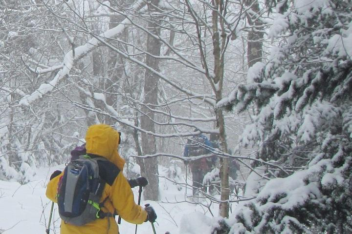 Pet Friendly Snowshoeing the Catskills in New York