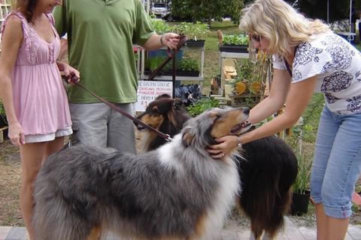 Pet Friendly GreenMarket