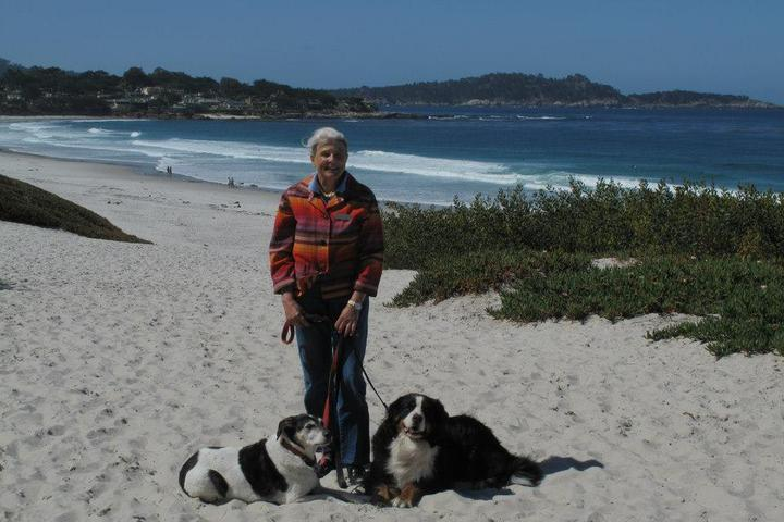 Pet Friendly California Legacy Tours