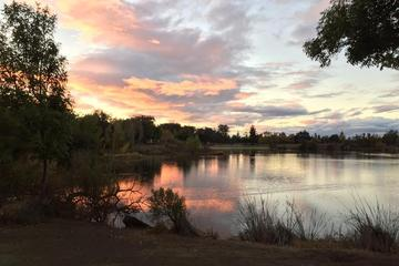 Pet Friendly Almaden Lake Park