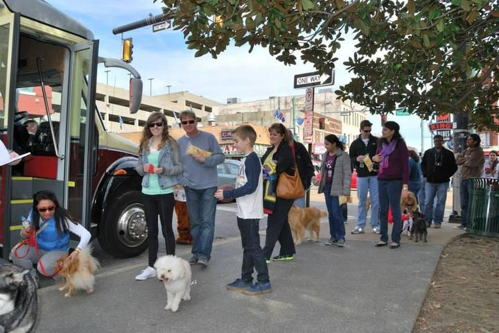 Pet Friendly Backbeat Tours