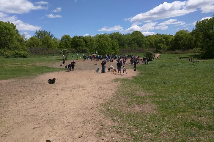 Pet Friendly Battle Creek Off Leash Site