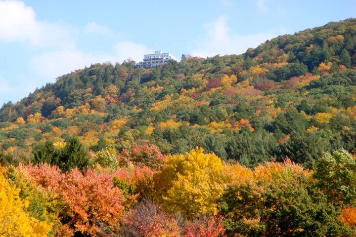 Pet Friendly Mount Holyoke Range State Park
