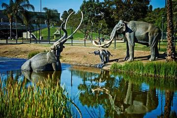 Pet Friendly La Brea Tarpits