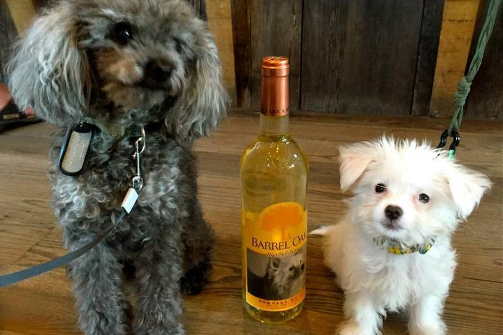 Pet Friendly Barrel Oak Winery & Farm Taphouse
