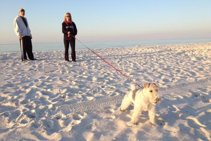 Pet Friendly Pensacola Beach East Dog Park