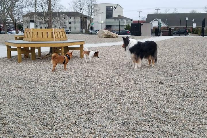 Pet Friendly Captain Jack Peterson Dog Park