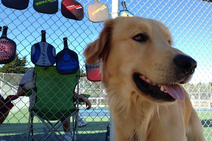 Pet Friendly Del Mar Park