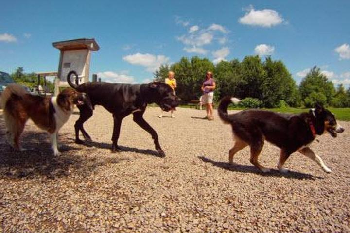 Pet Friendly Fish Lake Regional Park Dog Park