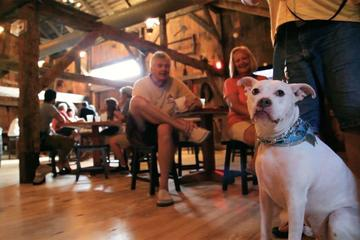 Pet Friendly Cold Spring Brewery