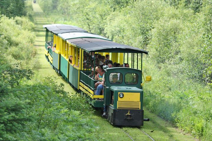 Pet Friendly Tahquamenon Falls Riverboat Tours & the Famous Toonerville Trolley