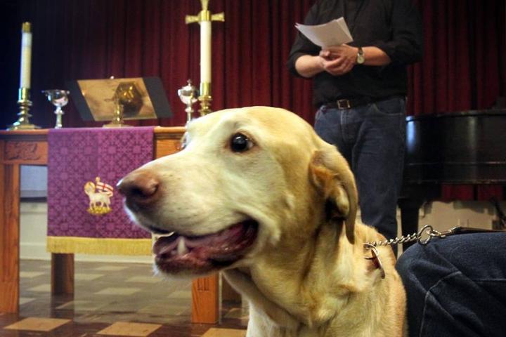 Pet Friendly Good Soil Lutheran Ministries