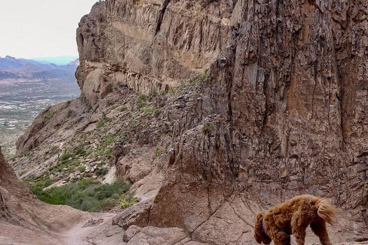 Pet Friendly Siphon Draw Trail