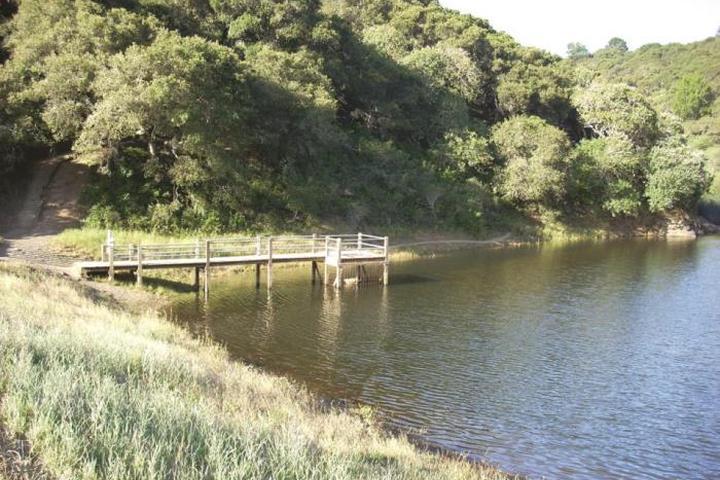 Pet Friendly Water Dog Lake Park
