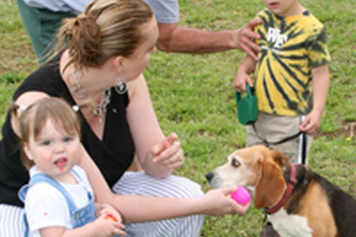 Pet Friendly Washington Dog Park
