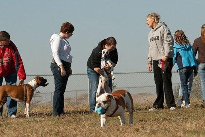 Pet Friendly Murfin Animal Care Campus Dog Park