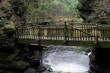 Pet Friendly Bushkill Falls