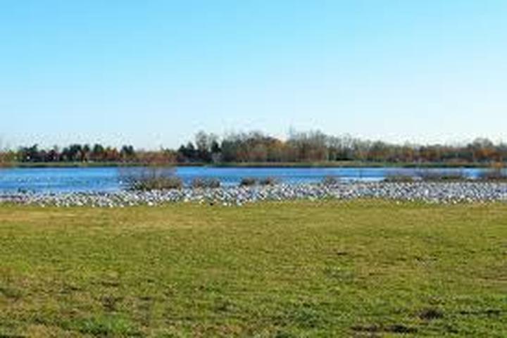 Pet Friendly Falls Township Park