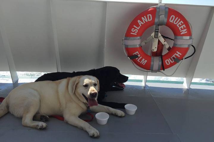 Pet Friendly Island Queen Ferry