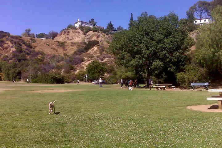 Pet Friendly Lake Hollywood Park